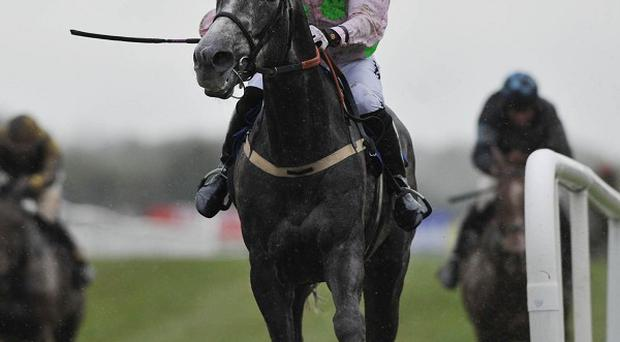 Patrick Mullins on Champagne Fever
