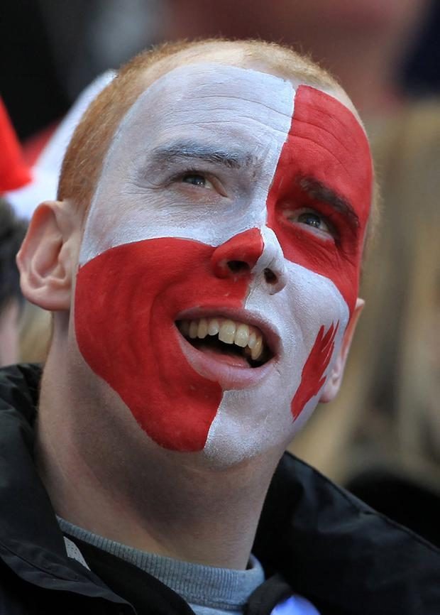 An Ulster fan during the Heineken Cup Semi Final at the Aviva Stadium