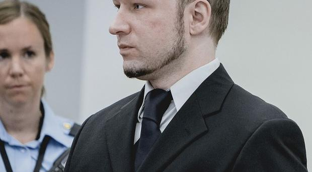 The trial of mass killer Anders Breivik has been interrupted by a shoe-throwing protester in court (AP)