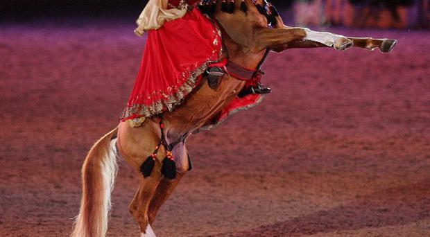 The Karabakh horse from Azerbaijan performs in the Diamond Jubilee Pageant at Windsor Castle