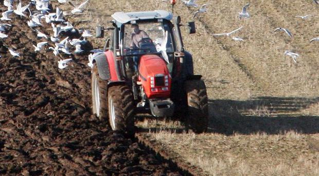 Northern Ireland has seen a recent increase in the level of agricultural crime, the Assembly heard