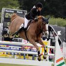 Jump to it: Top showjumping action from the opening day of the Balmoral Show at the King's Hall in south Belfast