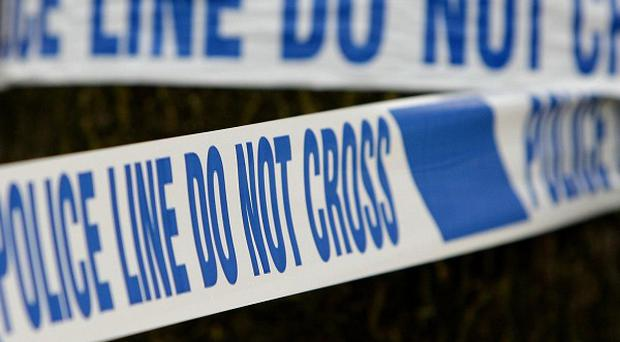 A man was injured when a small plane crashed in a field in Hertfordshire