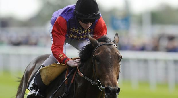 Carlton House, owned by the Queen, returns at Sandown tonight