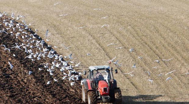 The House of Commons Environment Committee has criticised European Commission plans to make farming 'greener'