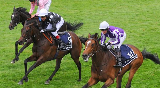 Was (near) holds off Shirocco Star and The Fugue