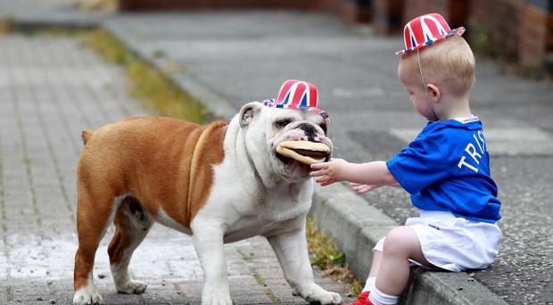 British Bulldog Alfie takes young Tristin Hamilton's burger during the Queen's Diamond Jubilee street party at Tigers Bay, Belfast