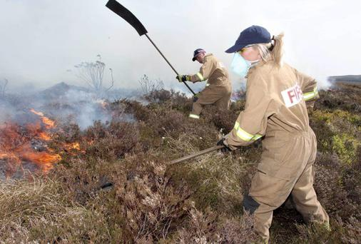 Heat of battle: workers try to put out a gorse fire outside Ballymoney
