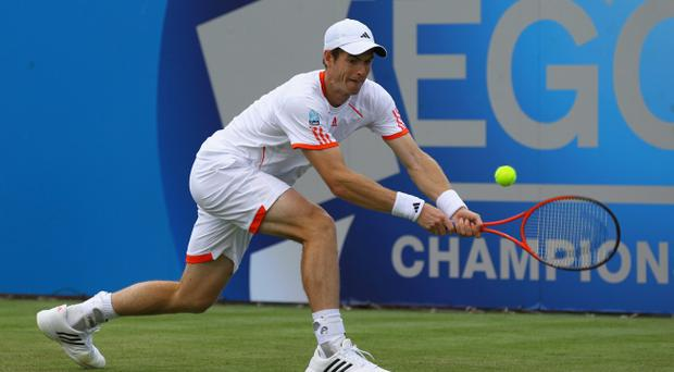 LONDON, ENGLAND - JUNE 13: Andy Murray of Great Britain hits a backhand return during his mens singles second round match against Nicolas Mahut of France on day three of the AEGON Championships at Queens Club on June 13, 2012 in London, England. (Photo by Matthew Lewis/Getty Images)