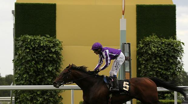 Fame And Glory winning last year's Gold Cup
