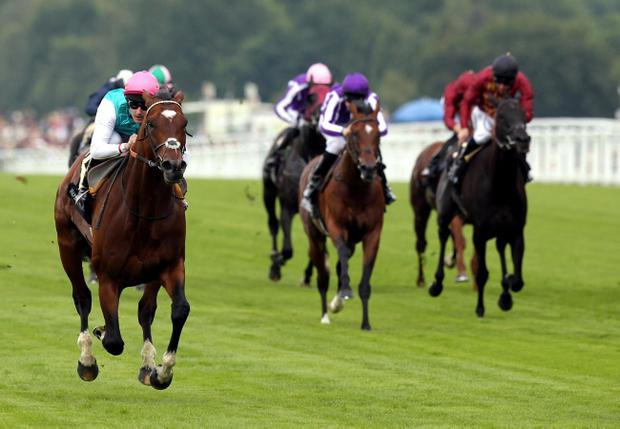 Tom Queally rides Frankel to victory in the Queen Anne Stakes on the first day of Royal Ascot