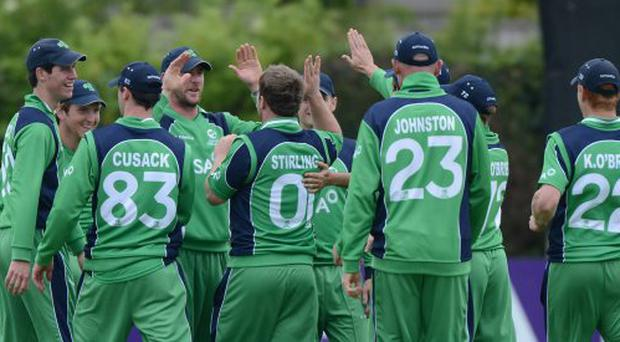 Paul Stirling is congratulated by his Irish team-mates after taking a wicket