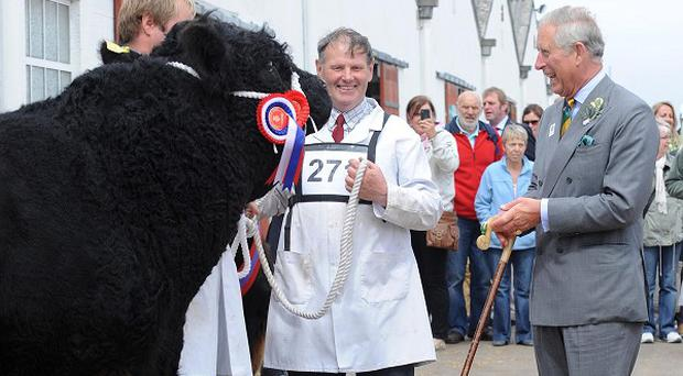The Prince of Wales at last year's Great Yorkshire Show, which has been cancelled this year