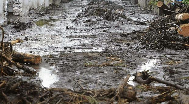 A road is covered with wood and other debris carried by a mudslide in Aso, Kumamoto prefecture, western Japan (AP)