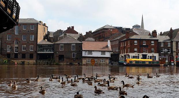 The National Trust warned the outlook for some species next year is bleak amid bad weather this year