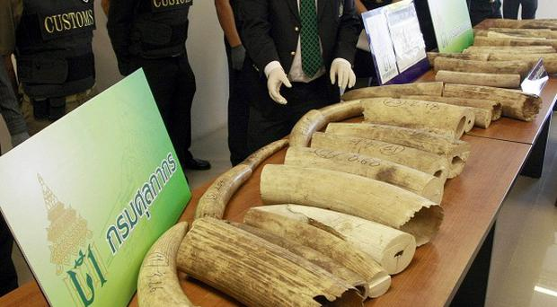 Thai customs officials show the seized ivory during a news conference in Bangkok (AP)