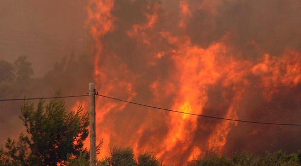 Flames burn trees and bushes during an wildfire near Patras, Greece (AP)
