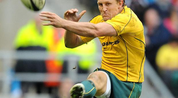 Lachie Turner has been called up to Australia's training squad