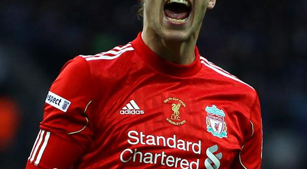 Wanted man: Andy Carroll could return to Newcastle United