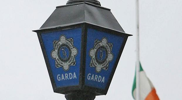 Public bodies, including An Garda Siochana, will be open to scrutiny under the new Freedom of Information act