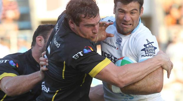 Neil McComb tries to go on the offensive for Ulster against Bayonne in France