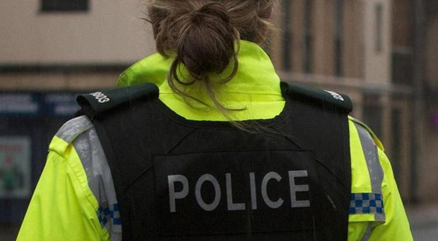 Police in Craigavon were attacked by people throwing bottles and bricks