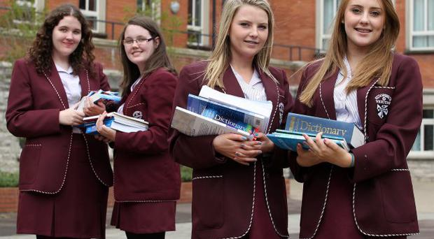 Well done: The two sets of twins who earned A* grades. From left Seainin and Colleen Maxwell and Seainin and Niamh and Aisling McGarrity