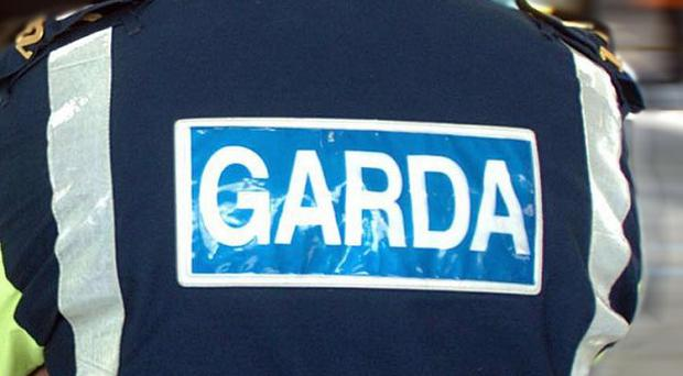 Several shots were fired through the front door of a home in Clara, gardai have said