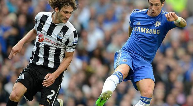 Fabricio Coloccini, left, has been linked with a move to Manchester City