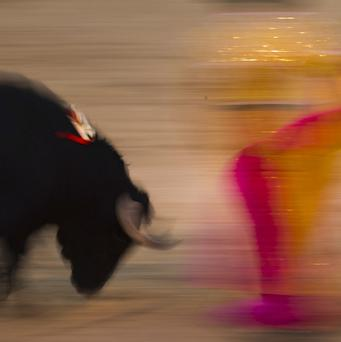 Bullfighting has been hard hit by declining popularity and the economic crisis (AP)