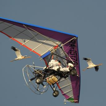 Vladimir Putin flies in a motorised hang glider alongside two Siberian white cranes on the Yamal Peninsula in Russia (AP)