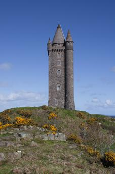 Scrabo Tower. Submitted by Barry McQueen