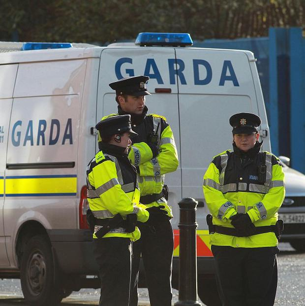 Gardai have said two rifles that were stolen from a gunshop in Ashford have been recovered