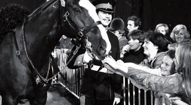 Trooper Michael Pedersen at the Horse of the Year Show with Sefton in 1982