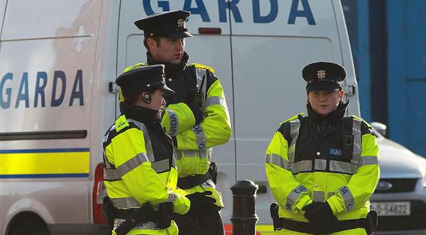 A major search operation recovered guns and ammunition from a halting site in north Dublin