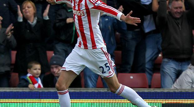 Stoke's Peter Crouch has been in fine form this season, but was not named in the England squad