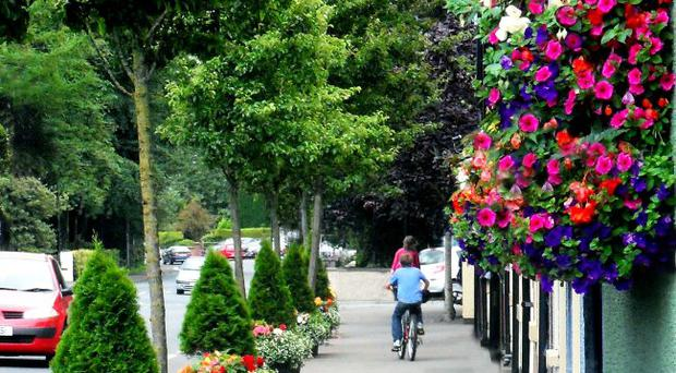 Success: Broughshane has been named champion of champions in the Britain in Bloom 2012 awards