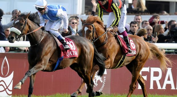 LONGCHAMP, FRANCE - OCTOBER 07: Olivier Peslier riding Solemia (L) catch Orfevre and Christophe Soumillon (R) to win the Qatar Prix de L'Arc de Triomphe at Longchamp racecourse on October 07, 2012 in Paris, France. (Photo by Alan Crowhurst/Getty Images)