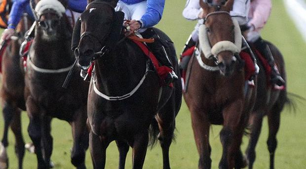 Racing at the Curragh