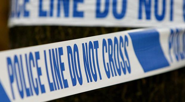 A man found injured by a road in Co Down has died