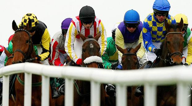 Punchestown action