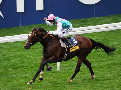 ASCOT, ENGLAND - OCTOBER 20: Tom Queally riding Frankel win The Qipco Champion Stakes at Ascot racecourse on October 20, 2012 in Ascot, England. (Photo by Tom Dulat/Getty Images)