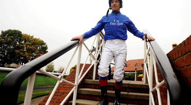 Frankie Dettori is temptingly priced at 1/4 to start next season as a freelance