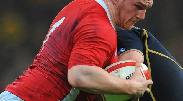Gethin Jenkins admits Wales' performance against Argentina was not good enough