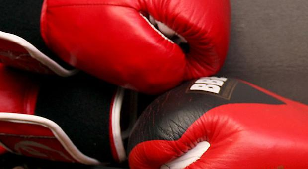 A Northern Ireland Boxing Federation has been called for