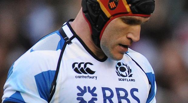 Alasdair Strokosch believes Scotland can take positives from defeat by New Zealand