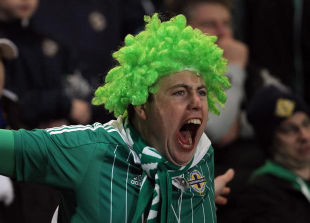 A Northern Ireland fan shows his frustration during Wednesday night's World Cup 2014 Qualifier at Windsor Park