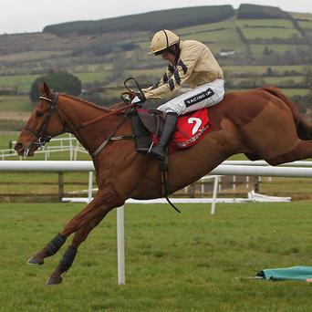 Back In Focus proved too strong at Punchestown