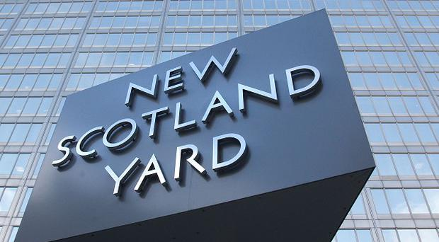 Police are investigating a 'brutal' sex attack in north London