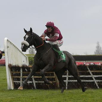 Don Cossack jumps the last to win the I.N.H. Stallion Owners European Breeders Fund Maiden Hurdle